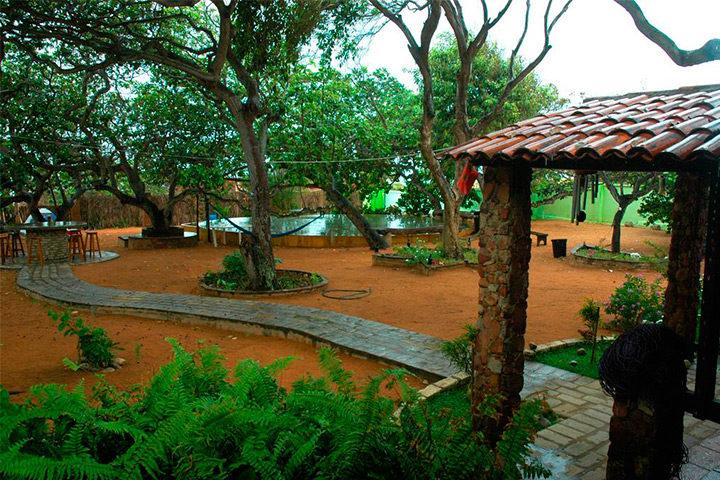 Área externa com árvores e jardim