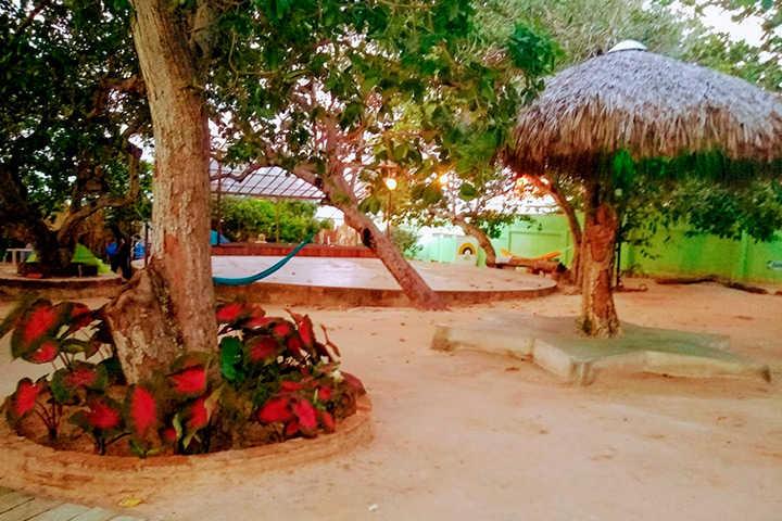 Jardim de pousada com árvores e pista de dança
