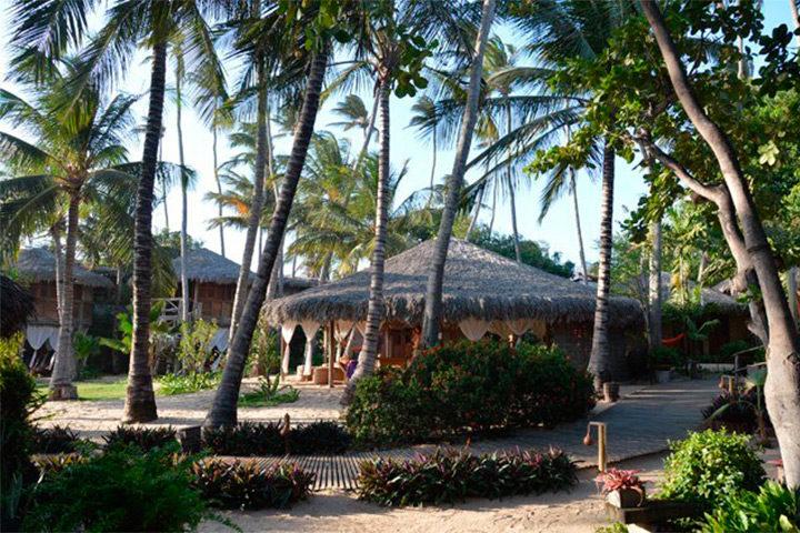 Área de lazer do Hotel Vila Kalango com árvores e coqueiros