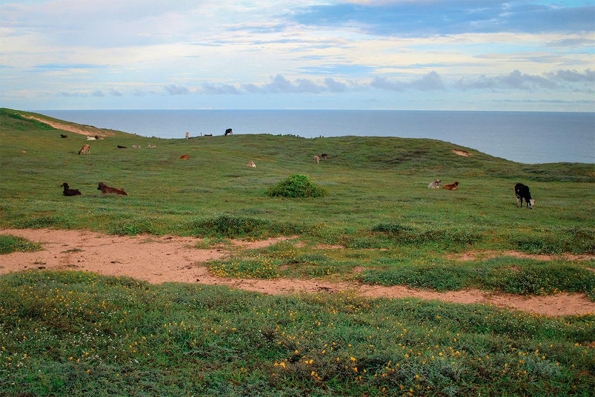 Foto fde paisagem do morro Serrote